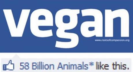 Who-likes-vegans_Fotor